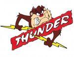 Sunny Corner Thunder logo2.