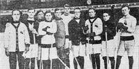 1908-09 AAHL season