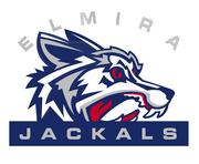 Elmira Jackals