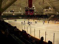 William Allman Arena