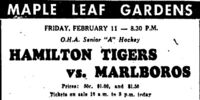 1948-49 OHA Senior Season
