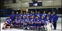 2005 AIHL season