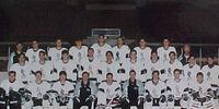 1992-93 IHL season
