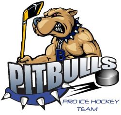 Bristol pitbulls