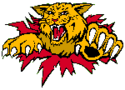 Monkton Wildcats Logo