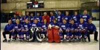 2006 AIHL season