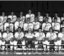 1990–91 NCAA Division I men's ice hockey season