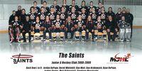 2008-09 Winnipeg Saints season