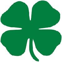 File:Irish-Clover.jpg
