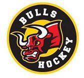 File:Exton Bulls logo.jpg