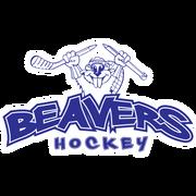 Thunder-bay-beavers