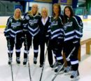 2011–12 Mercyhurst Lakers women's ice hockey season
