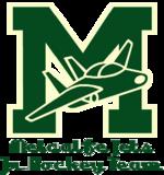 Metcalfe Jets copy