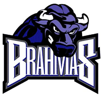 File:TexasBrahmas.JPG