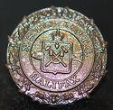 NS-Tech-medallion-225x219