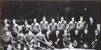 1932-33 Toronto National Sea Fleas