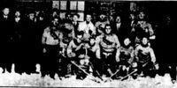 1923-24 MRIHL
