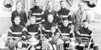 1923-24 British Columbia Senior Playoffs