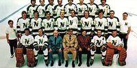 1972–73 Minnesota North Stars season