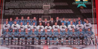 1996–97 San Jose Sharks season