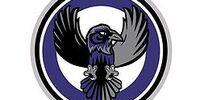 Halton Ravens