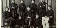 Manitoba Bisons women's ice hockey