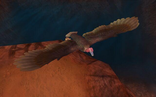 File:Vulture.jpg