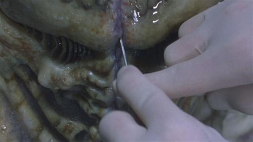 File:Lab Alien-2.jpg