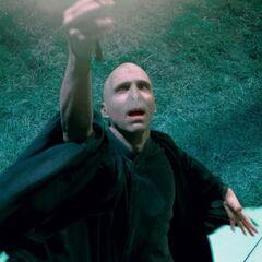 Decepticon Voldemort
