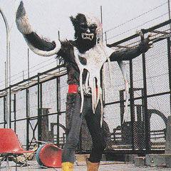 Kuragewolf
