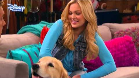 I Didn't Do It Lucky The Dog Official Disney Channel UK