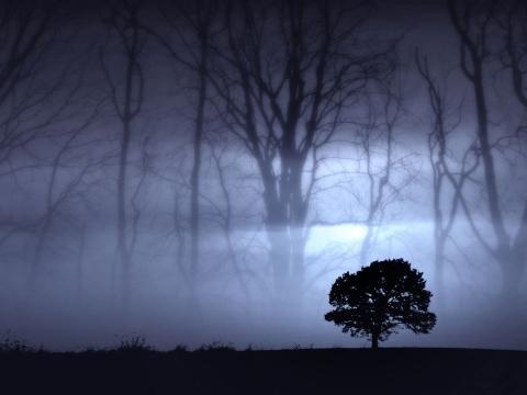 File:Noite1.jpg