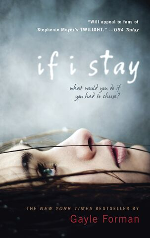 File:Ifistaybook.jpg