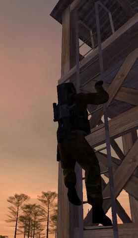 File:Jones ladder2.jpg