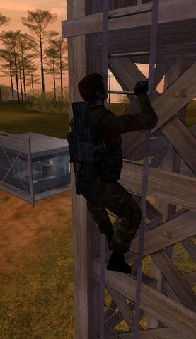 File:Jones ladder.jpg