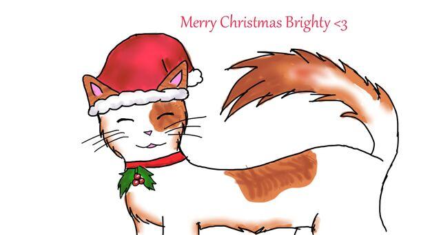 File:Secret santa cat.jpg