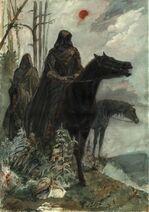 Shades on horses