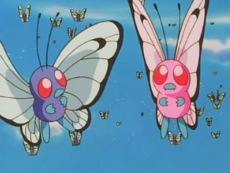 File:230px-Pink Butterfree.png