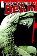 The Walking Dead Vol 1 45
