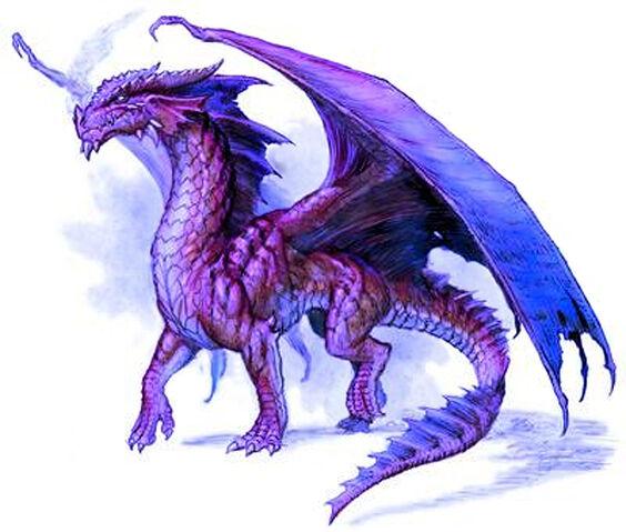 File:Purple-dragon.jpg