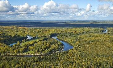 Plains of Western Siberia