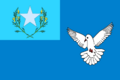 Flag of the congo society by parsonnathaniel-d7deo24.png