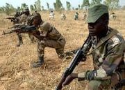 Niger Army 322nd Parachute Regiment