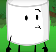 Marshmallow-What-do-you-want