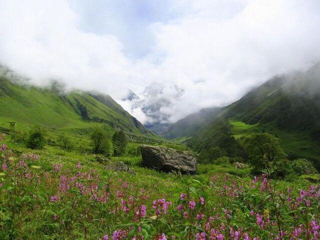 File:Valley of flowers uttaranchal full view.JPG