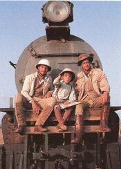 Medlicot train