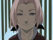 Oh Crap Sakura Syndrome