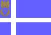 RIN flag