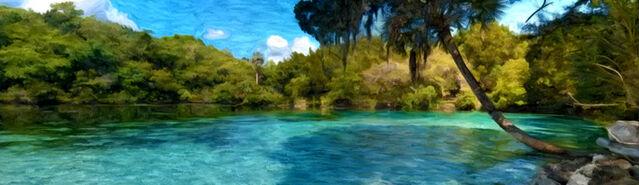 File:Banner---tropical-water1.jpg