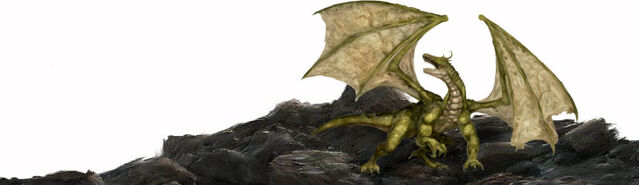 File:Npc-young-green-dragon.jpg